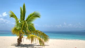 Bacardi Insel   Nikon D5100