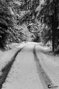 Schneeweg | Nikon D5300