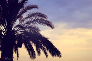 Sunset | Nikon D5300