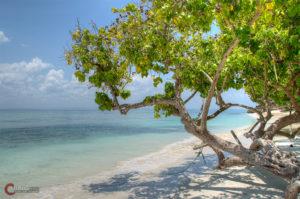 Bacardi Insel | Nikon D5100