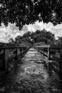 Gefährlicher Steg | Nikon D5100