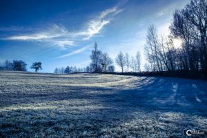 Winter Frost | Nikon D5300