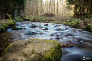 Drachselsried Wasserlauf | Nikon D5300