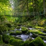 Hängebrücke Buchberger Leite | Nikon D5300