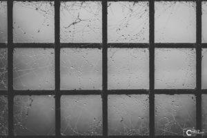 Gitter mit Spinnennetz | Nikon D5300