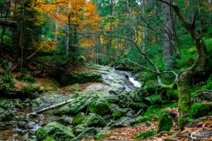Risslochwasserfälle | Nikon D5300