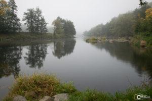 Fluss Regen - unbearbeitet