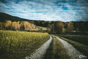 Weg | Nikon D5300