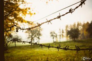 Herbst | Nikon D5300